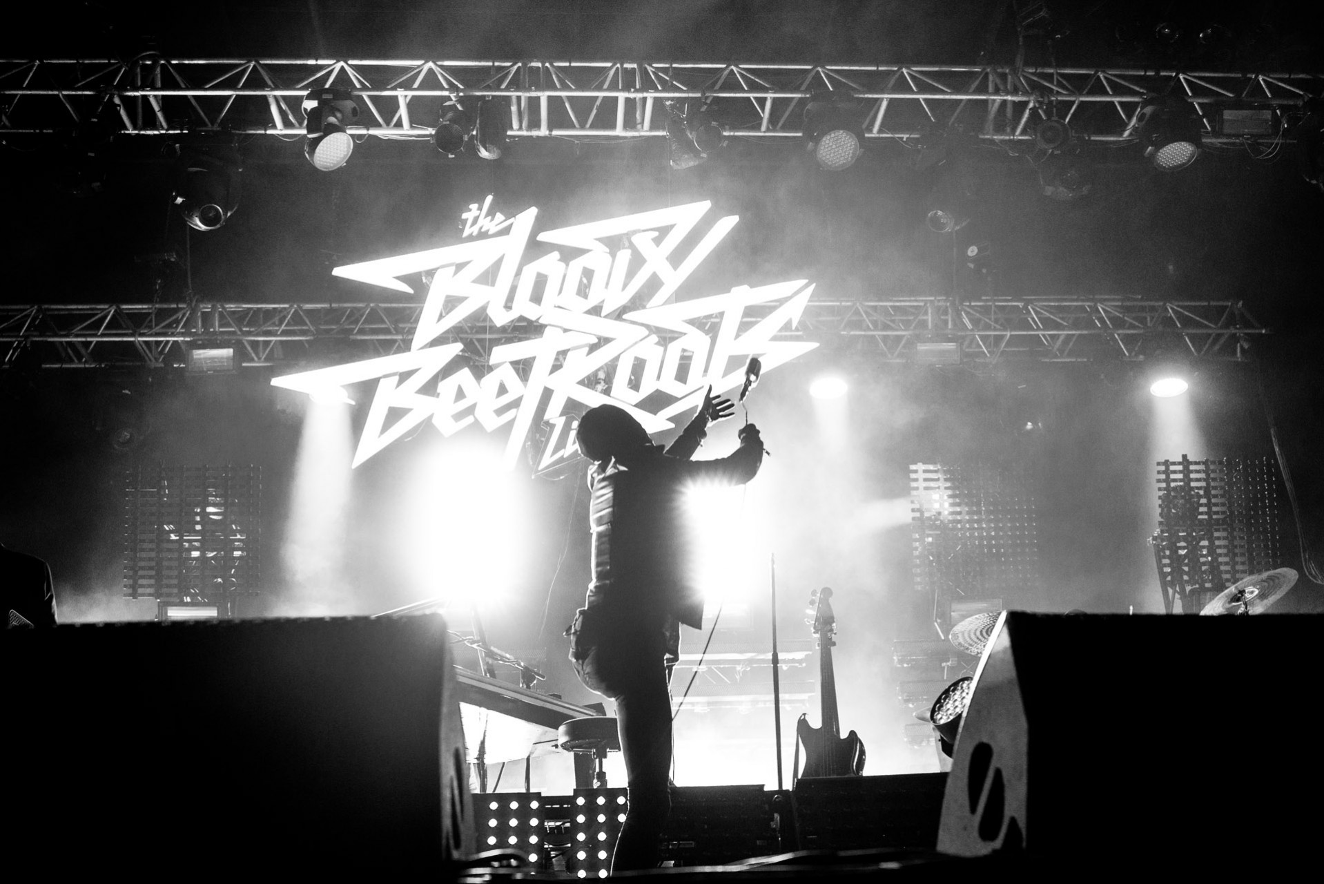 BLOODY BEETROOTS_11